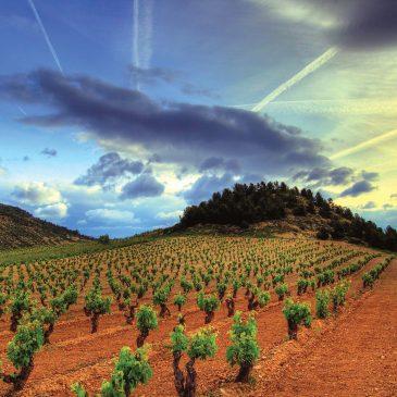 Rioja, la suite…
